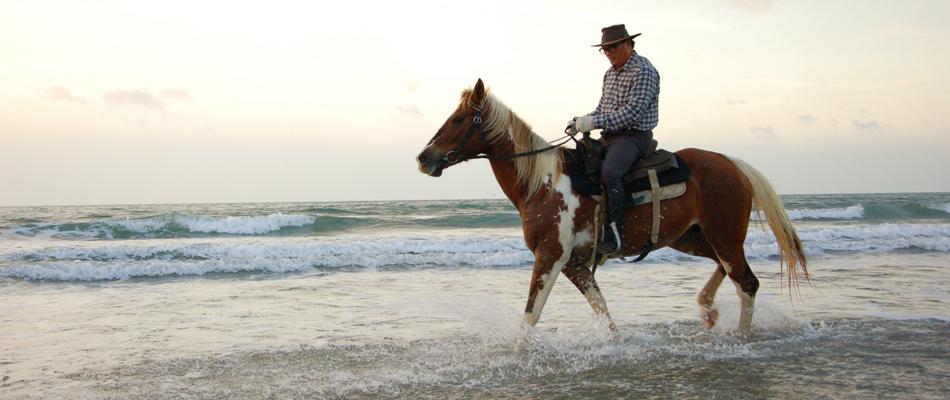 台灣最美的馬場,唯一野外涉溪、海邊騎乘體驗